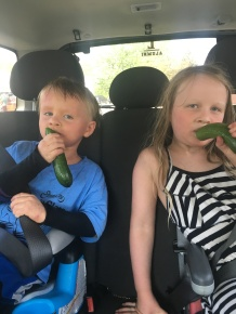 May 2018 - Farmer's Market eating a fresh cucumber